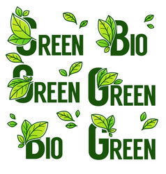 green and bio product doodle organic leaves vector image vector image
