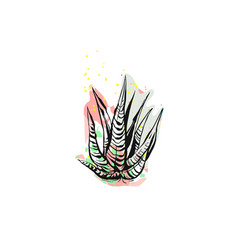 hand drawn abstract graphic drawing aloe vector image vector image