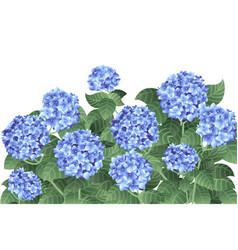 Bush blue hydrangea flowers with green stems vector