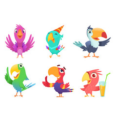 cartoon parrots characters cute feathered birds vector image
