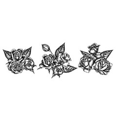 flower bouquet black and white roses vector image