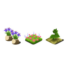 garden plants and flowers game user interface vector image