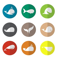 Group of whale in the circle vector
