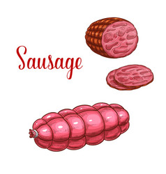 Sausage salami meat sketch icon vector