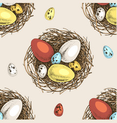 seamless pattern with hand drawn eggs and nests vector image