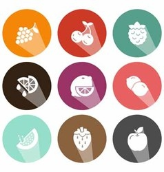 Solid icons fruits shadow vector image