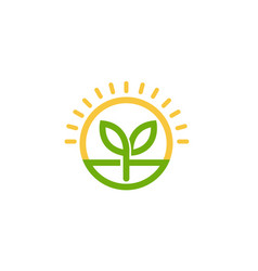 Sprout leaf circle sun logo vector
