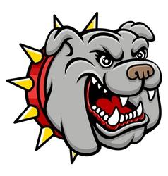 Bulldog head vector image