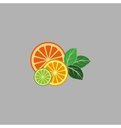 Fruit and mint vector image
