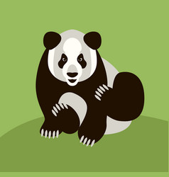 adult panda flat style front vector image