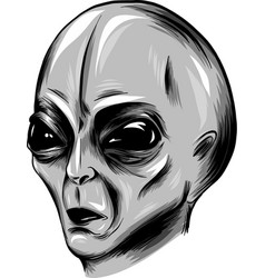 alien face in white background vector image