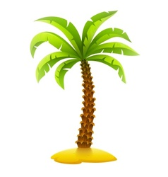 Coconut palm tree on sand vector