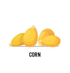 Corn beans organic healthy vegetarian food on vector