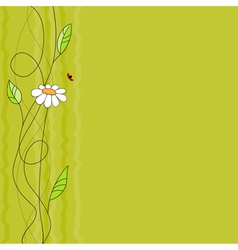 Floral background with ladybird vector image