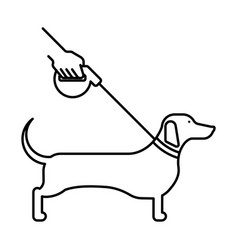 Line icon dog dachshund vector