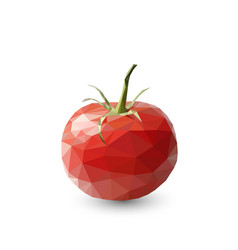 polygonal tomato abstract geometric vector image