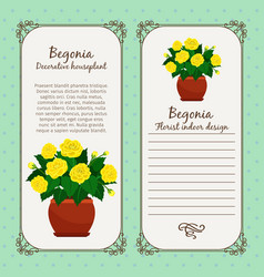 vintage label with begonia plant vector image