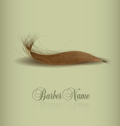 hair logo for your design vector image