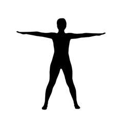 Silhouette of woman doing yoga vector image vector image