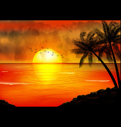 a tropical sunset with palm trees vector image