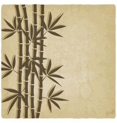 bamboo old background vector image