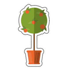 cartoon tree pot decorative garden vector image