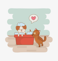 cute little doggy and kitty mascots vector image