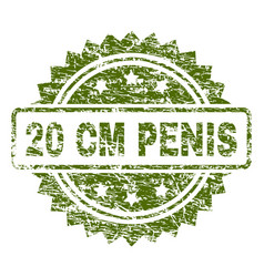 grunge textured 20 cm penis stamp seal vector image