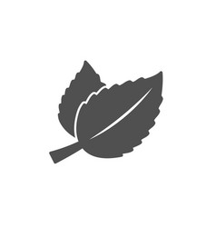 Mint leaves icon herbal leaf vector