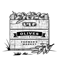 Retro crate of olives black and white vector image vector image