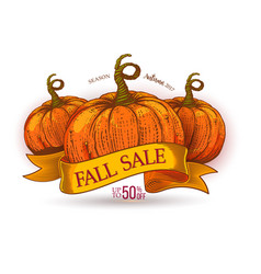 fall sale discount offer on ribbon vector image vector image