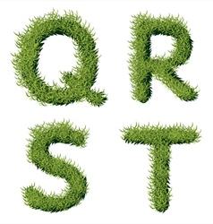 Green Grass Alphabet Q R S T vector image
