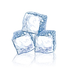 object chunks of ice vector image