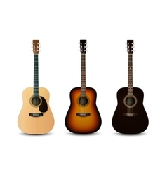 Realistic acoustic guitars set vector image