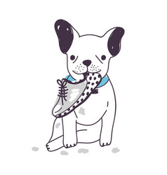 Amusing dog sitting and chewing or gnawing shoe vector