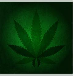 Cannabis hemp vector
