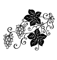 Decorative Bush Hop vector image