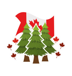 Pine tree and canada symbol design vector
