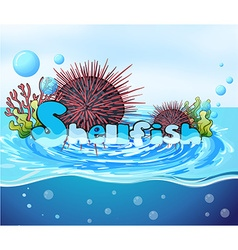 Sea urchin floating on water vector