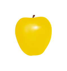 yellow apple in on white background vector image