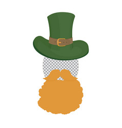 saint patricks photo template green hat with vector image