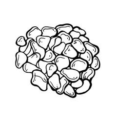 painted sea pebbles vector image vector image