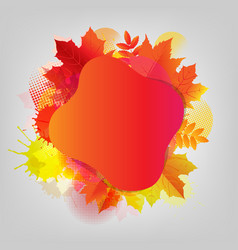 autumn poster with colorful stain and leaf vector image