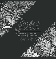 Culinary herbs and spices banner template vector