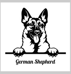 German shepherd - peeking dogs - - breed face head vector