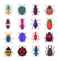 Insect bug icons set cartoon style vector image