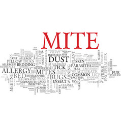 Mite word cloud concept vector