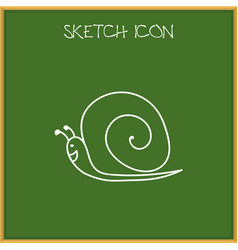 Of zoo symbol on snail doodle vector