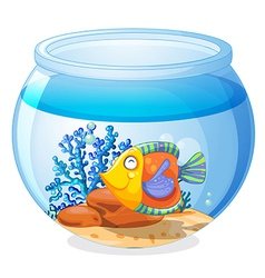 An aquarium with a fish vector image vector image