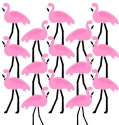 Birds Flamingo vector